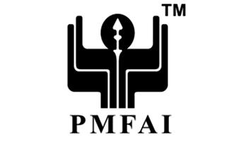 PMFAI